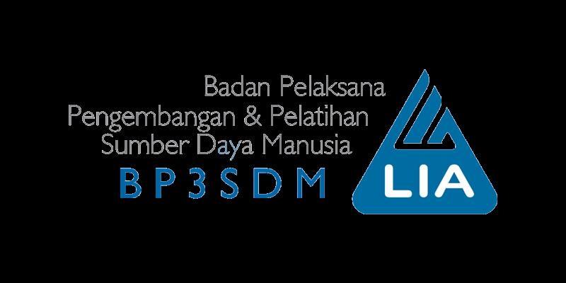 BP3SDM